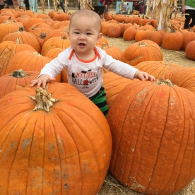 My 1st Pumpkin Patch!
