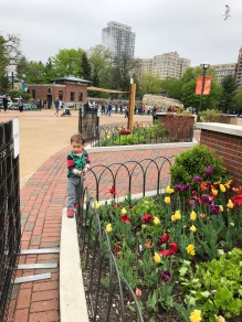 Of all the things to see at Lincoln Park Zoo, he loved to admire the flowers.