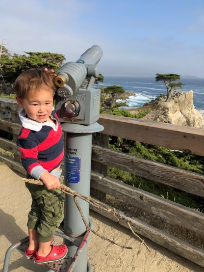 Where's that Lone Cypress tree?