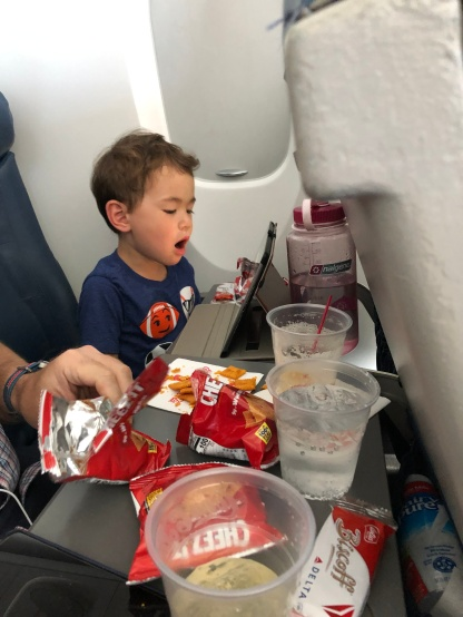 A picnic on the plane